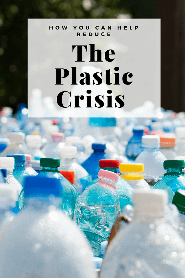 how you can help reduce the plastic crisis. amazon prime day, single use plastic, sustainable, reusable, eco friendly, oceans, the great pacific garbage patch,